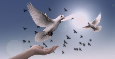 Decálogo de la paz
